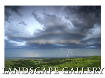 Conservation Media's Landscape Photography Gallery