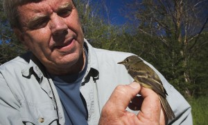 UM Wildlife Biology – Dick Hutto, PhD.