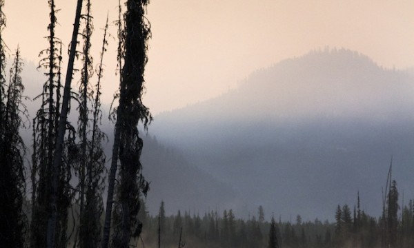 Rocky Mountain Wildfire Season