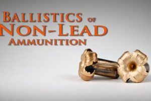 Saving Condors: Ballistics of Non-Lead Ammunition