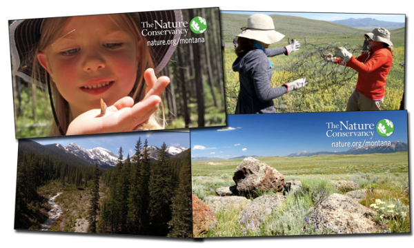 The Nature Conservancy Uses Conservation Media, LLC Footage in TV Commercials