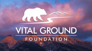 Vital Ground - Vision Campaign